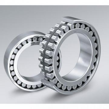 Chinese Manufactory of Cylindrical Roller Bearing (NJ 203 E)
