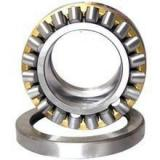 Chinese Manufactory of Cylindrical Roller Bearing (N 324 EM)